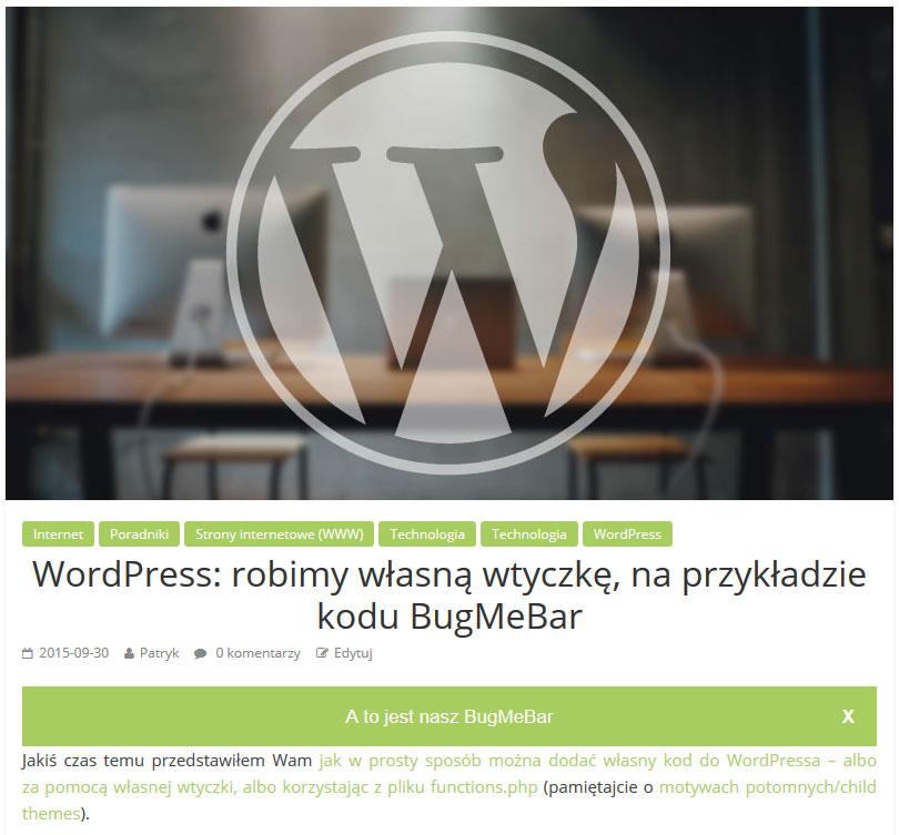 wordpress_wlasna-wtyczka_bugmebar
