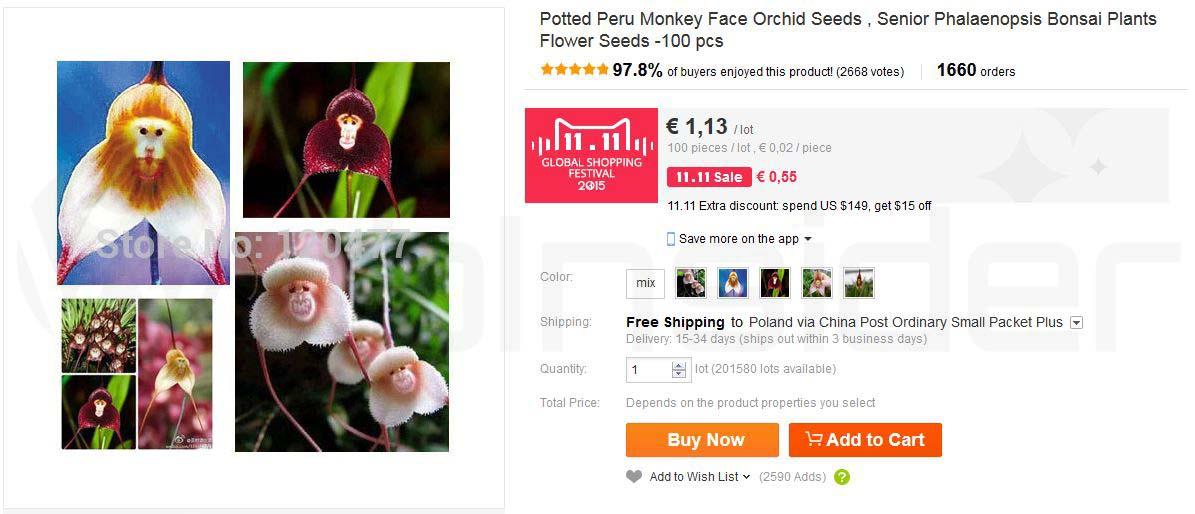 aliexpress_monkey-face_store120477