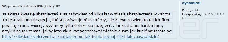 silesia-ubezpieczenia_spam_obcasy-pl_201601