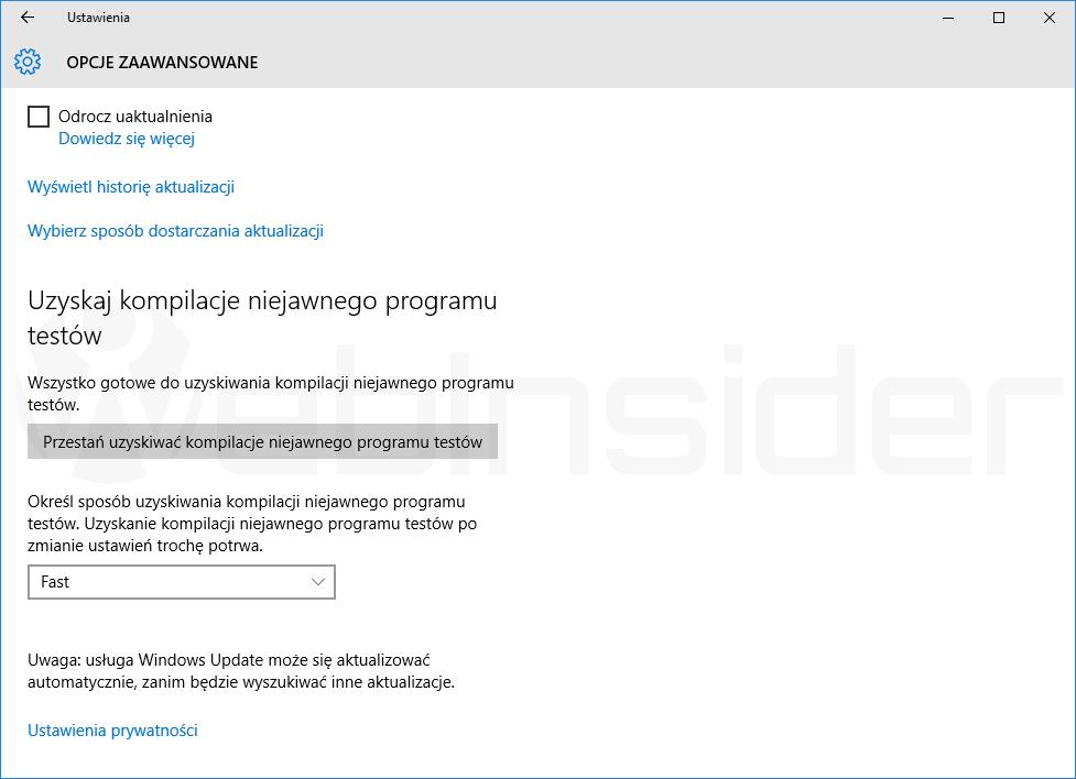 windows10_ustawienia_aktualizacja-i-zabezpieczenia_zaawansowane_fast-ring_przed14316_01