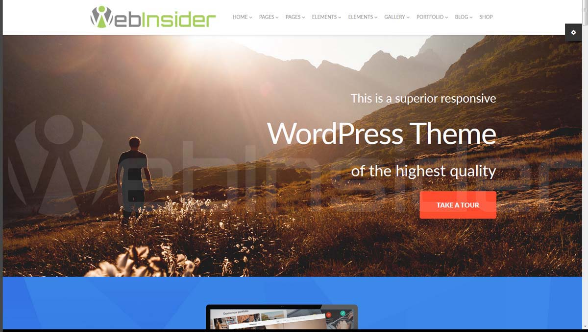 templatemonster_wp-theme_monstroid-55555_intro01