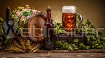Dotarła domnie styczniowa przesyłka Mikkeller Beer Mail, awniej 9 piw – kilka lżejszych, kilka mocniejszych, adotego coś nadzikusach